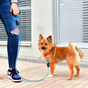 Correa-Larga-Poliuretano-Xolo-Pets-Bastian-Pomeranian