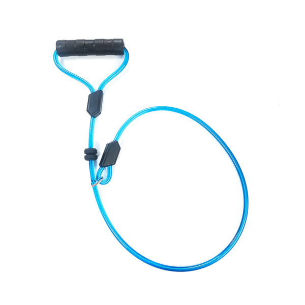 Blue Choke Dog Leash with Black Handle on white background. The material is slightly transparent revealing a cable inside.